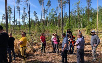 Metsäympäristöohjelma osana yhtiöiden omaa koulutusta